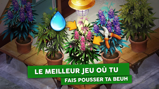 Hempire – Jeu de culture de plante screenshots 1