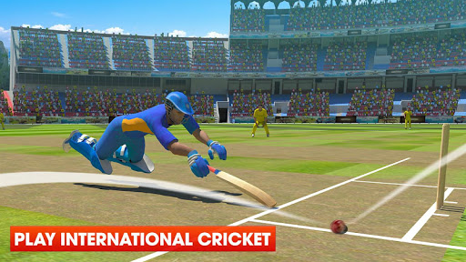 Real World Cricket 18 Cricket Games screenshots 1