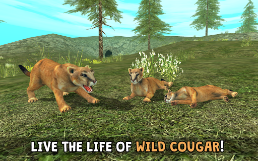 Wild Cougar Sim 3D screenshots 1